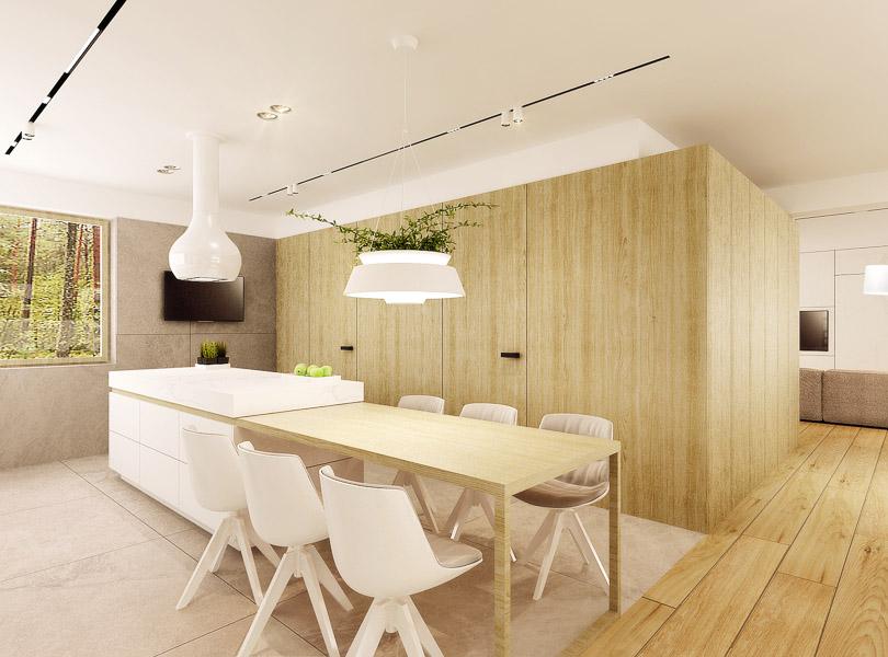 w kuchni oświetlenie na szynach wpuszczanych w sufit, lampa z roślinami