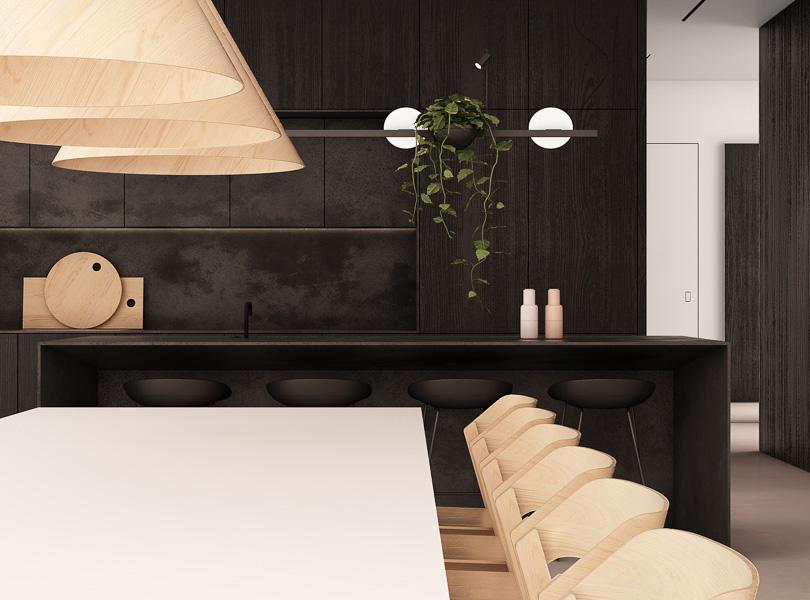 projektowanie wnętrz, czarna kuchnia z dużą wyspą, minimalistyczna zabudowa kuchni, wiszące rośliny w kuchni