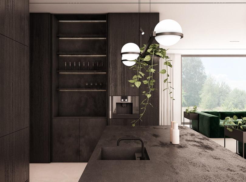 czarna kuchnia z dużą wyspą, minimalistyczna zabudowa kuchni, wiszące rośliny w kuchni, ukryty barek